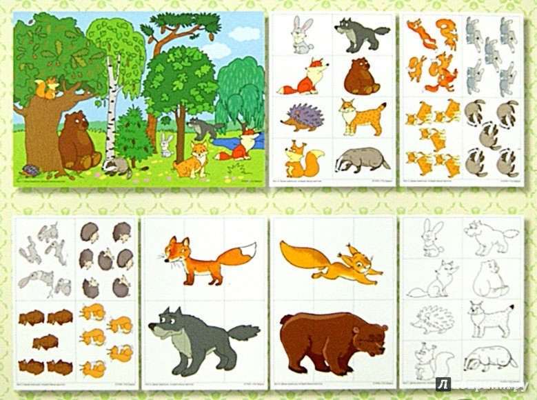 Иллюстрация 1 из 25 для Дикие животные. Интерактивные карточки - Елена Косинова | Лабиринт - книги. Источник: Лабиринт