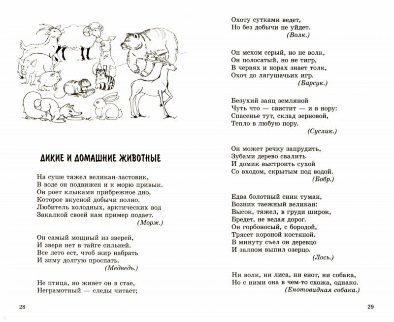 Иллюстрация 1 из 6 для 500 загадок в стихах для детей - Евгений Адарич | Лабиринт - книги. Источник: Лабиринт