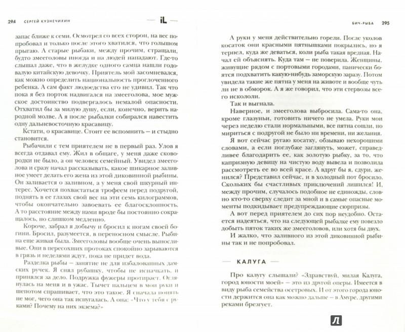 Иллюстрация 1 из 6 для БИЧ-Рыба - Сергей Кузнечихин | Лабиринт - книги. Источник: Лабиринт