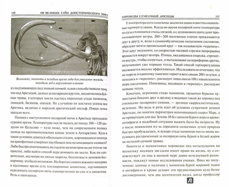Иллюстрация 1 из 21 для 100 великих тайн доисторического мира - Николай Непомнящий   Лабиринт - книги. Источник: Лабиринт