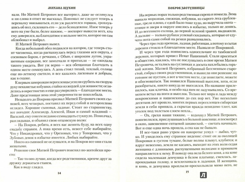 Иллюстрация 1 из 12 для Покров Заступницы - Михаил Щукин | Лабиринт - книги. Источник: Лабиринт