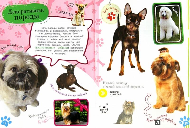 Иллюстрация 1 из 20 для Как воспитать щенка | Лабиринт - книги. Источник: Лабиринт