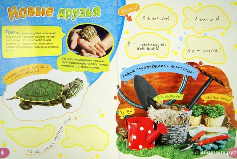 Иллюстрация 1 из 18 для Моя милая черепаха | Лабиринт - книги. Источник: Лабиринт