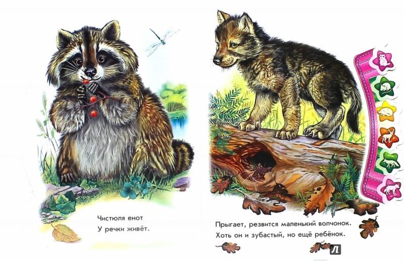 Иллюстрация 1 из 35 для В лесу - Олеся Квитка | Лабиринт - книги. Источник: Лабиринт