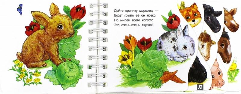Иллюстрация 1 из 32 для На ферме (новый формат) - Ю. Каспарова | Лабиринт - книги. Источник: Лабиринт