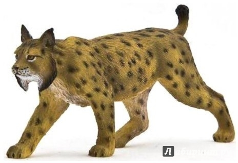 Иллюстрация 1 из 3 для Иберийская рысь (Iberian Lynx) (387064) | Лабиринт - игрушки. Источник: Лабиринт