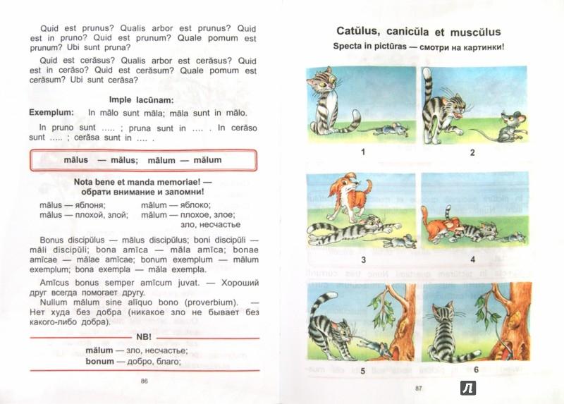 Иллюстрация 1 из 21 для Моя первая латинская книжка. 3-6 классы. Учебник - Нина Кацман | Лабиринт - книги. Источник: Лабиринт
