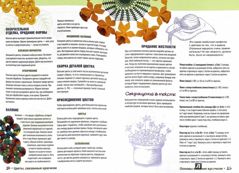 Иллюстрация 1 из 19 для Чудесные цветы и букеты. Вяжем крючком - Сьюзен Томпсон | Лабиринт - книги. Источник: Лабиринт