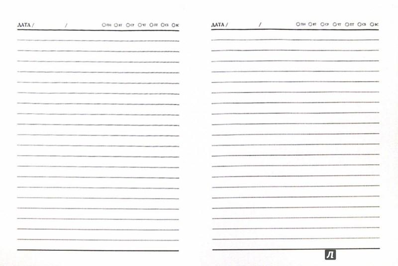 Иллюстрация 1 из 16 для Ежедневник недатированный. ОРНАМЕНТ. (А6, 80 листов) (34014-24) | Лабиринт - канцтовы. Источник: Лабиринт