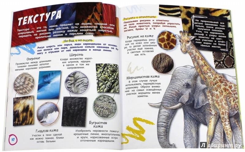 Иллюстрация 1 из 9 для Как нарисовать животных - Сьюзи Ходж | Лабиринт - книги. Источник: Лабиринт