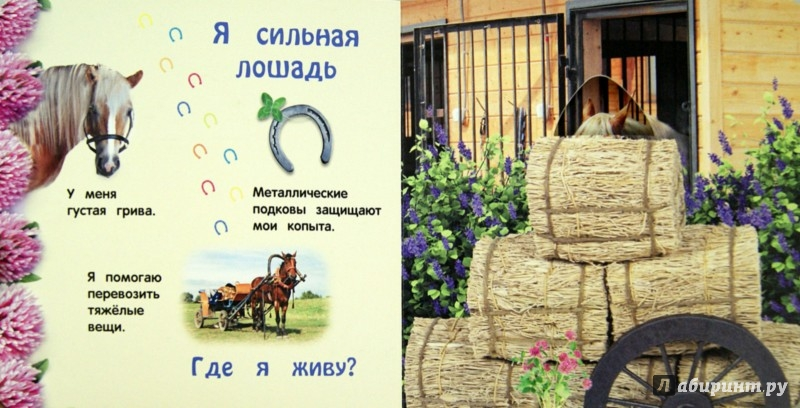 Иллюстрация 1 из 21 для Чей это домик - Анастасия Климко | Лабиринт - книги. Источник: Лабиринт