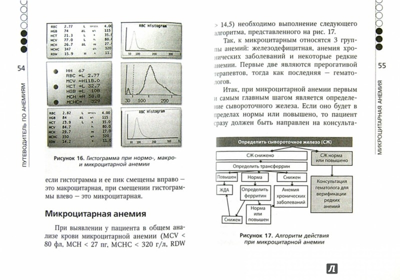Иллюстрация 1 из 14 для Анемия. Руководство для практических врачей - Верткин, Ховасова, Ларюшкина | Лабиринт - книги. Источник: Лабиринт