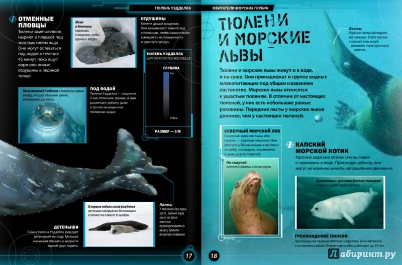 Иллюстрация 1 из 11 для Обитатели морских глубин - Бедуайер Камилла де ла | Лабиринт - книги. Источник: Лабиринт