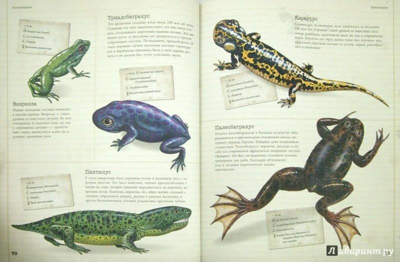 Иллюстрация 1 из 20 для Динозавры и другие доисторические животные. Детская энциклопедия | Лабиринт - книги. Источник: Лабиринт