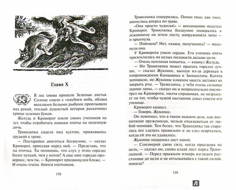 Иллюстрация 1 из 53 для Обещание Метеора. Прозрение - Эрин Хантер | Лабиринт - книги. Источник: Лабиринт