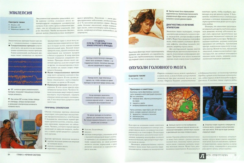 Иллюстрация 1 из 15 для Иллюстрированная медицинская энциклопедия для всей семьи - Ферми, Шепард | Лабиринт - книги. Источник: Лабиринт