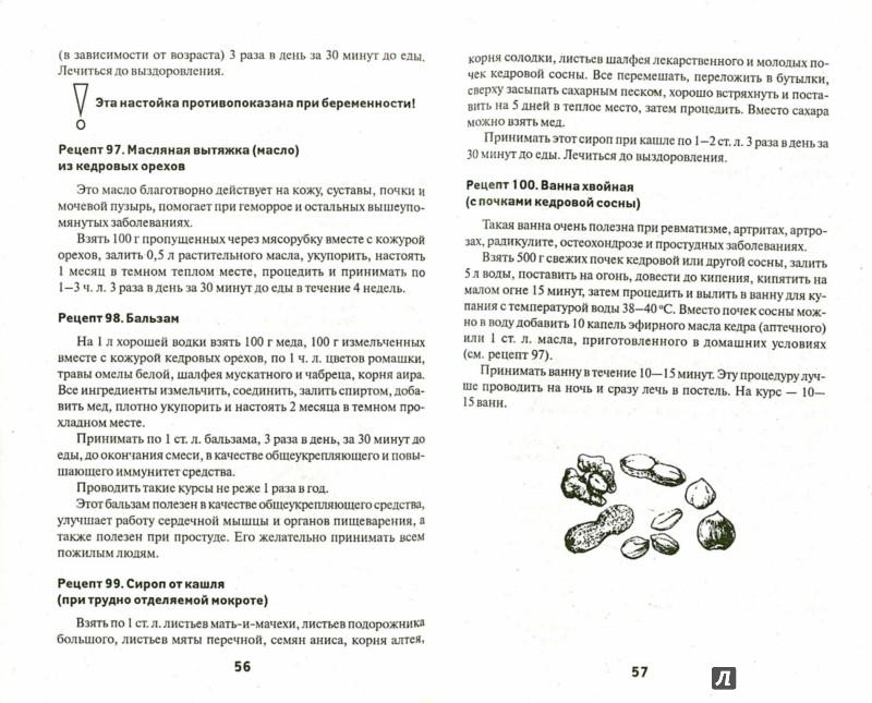 Иллюстрация 1 из 6 для Орехи и грибы для вашего здоровья - Галина Сергеева | Лабиринт - книги. Источник: Лабиринт