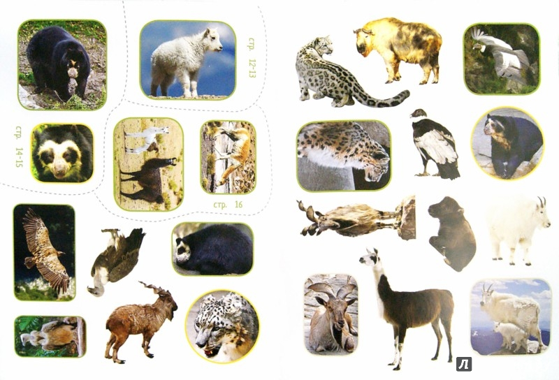 Иллюстрация 1 из 9 для Обитатели гор (+наклейки) - Наталья Рубинштейн | Лабиринт - книги. Источник: Лабиринт