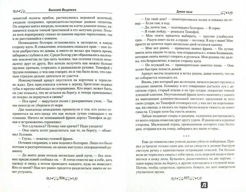 Иллюстрация 1 из 7 для Дикое поле - Василий Веденеев | Лабиринт - книги. Источник: Лабиринт