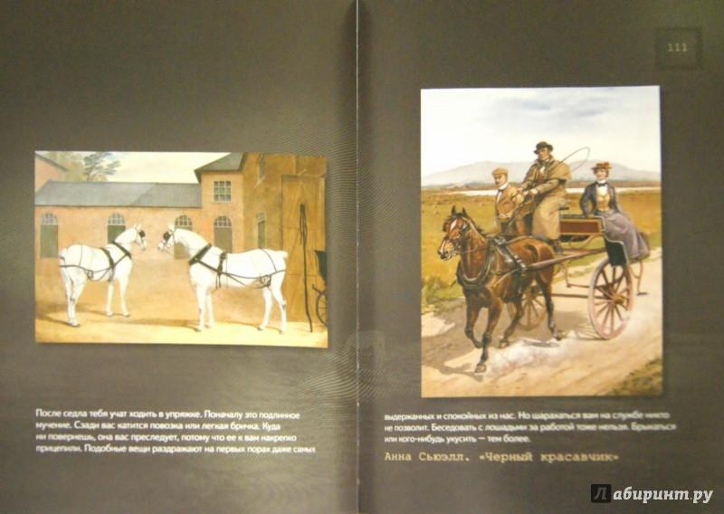 Иллюстрация 1 из 15 для Лошади. Старинные открытки и иллюстрации | Лабиринт - книги. Источник: Лабиринт