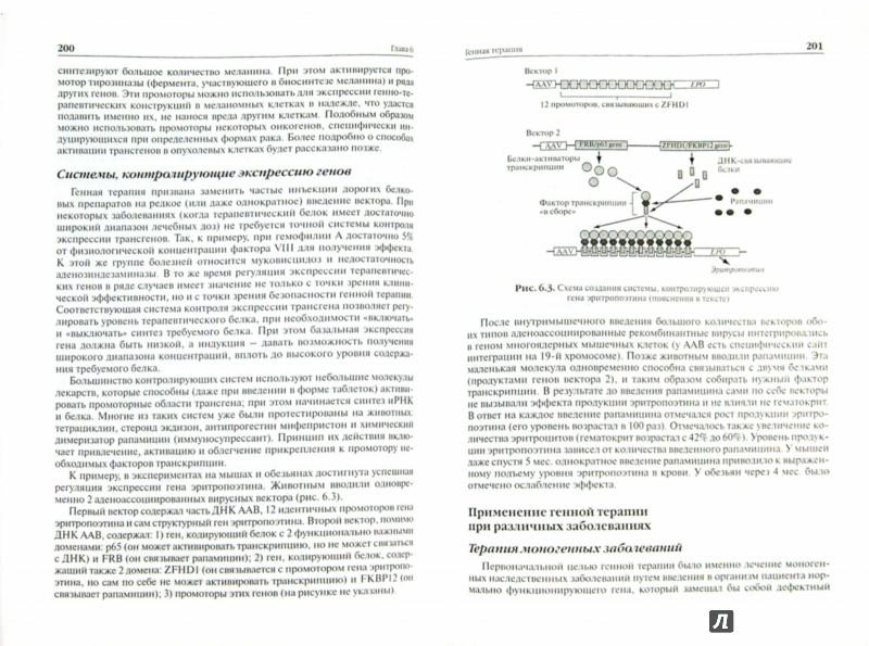 Иллюстрация 1 из 26 для Патологическая биохимия - Таганович, Олецкий, Котович | Лабиринт - книги. Источник: Лабиринт