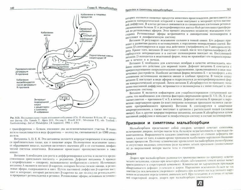 Иллюстрация 1 из 16 для Патофизиология органов пищеварения - Джозеф Хендерсон | Лабиринт - книги. Источник: Лабиринт