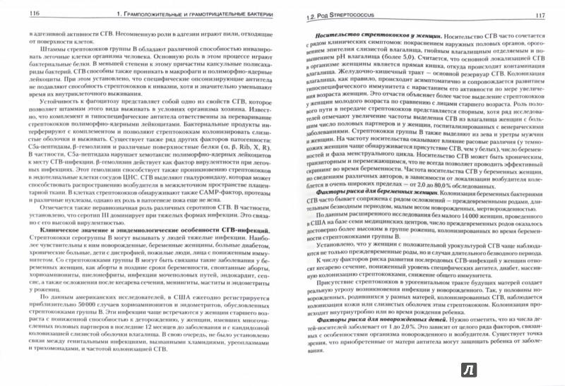 Иллюстрация 1 из 22 для Руководство по медицинской микробиологии. Книга 3. Том первый. Оппортунистические инфекции - Арсланова, Бабин, Батуро | Лабиринт - книги. Источник: Лабиринт
