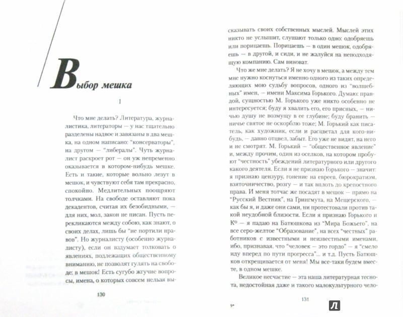 Иллюстрация 1 из 7 для Литературный дневник (1899-1907) - Зинаида Гиппиус | Лабиринт - книги. Источник: Лабиринт