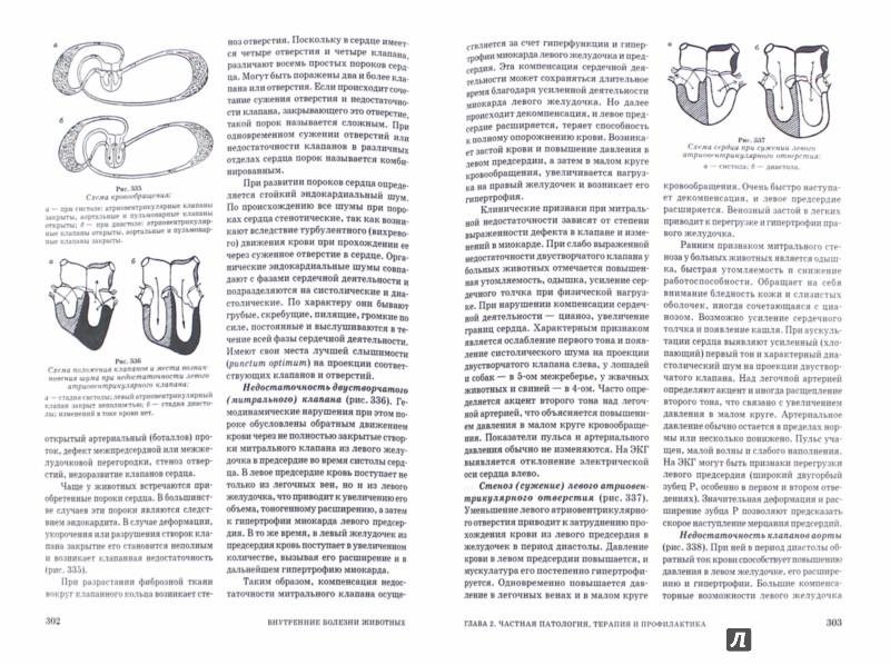 Иллюстрация 1 из 14 для Внутренние болезни животных. Учебник - Алексеева, Щербаков, Яшин, Курдеко, Мурзагулов | Лабиринт - книги. Источник: Лабиринт