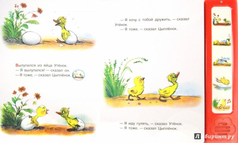 Иллюстрация 1 из 5 для Цыплёнок и утёнок - Владимир Сутеев | Лабиринт - книги. Источник: Лабиринт