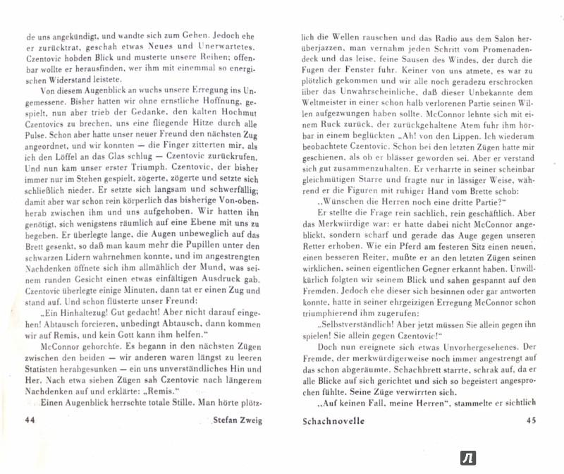 Иллюстрация 1 из 17 для Читаем в оригинале: Stefan Zweig - Стефан Цвейг   Лабиринт - книги. Источник: Лабиринт