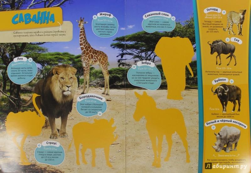 Иллюстрация 1 из 10 для Зоопарк | Лабиринт - книги. Источник: Лабиринт