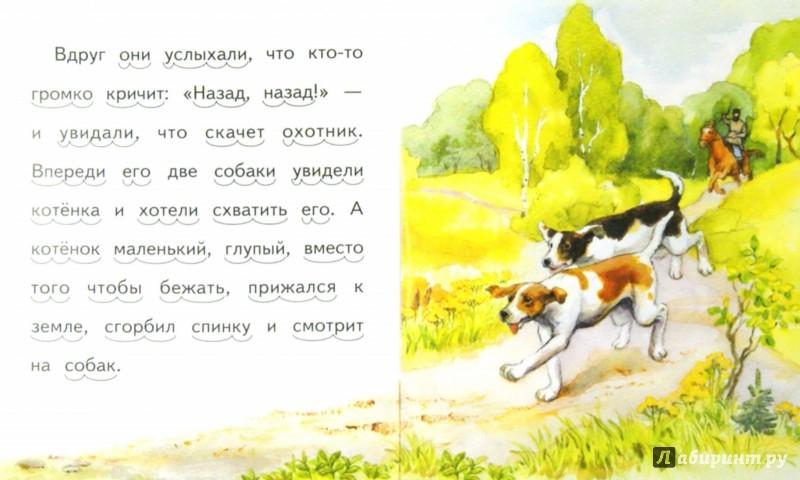 Иллюстрация 1 из 30 для Котёнок - Лев Толстой | Лабиринт - книги. Источник: Лабиринт
