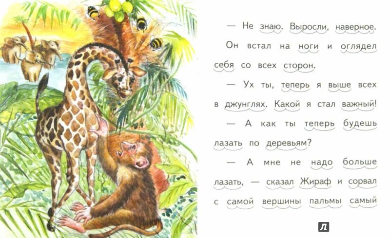 Иллюстрация 1 из 13 для Почему у жирафа длинная шея - Елена Ермолова   Лабиринт - книги. Источник: Лабиринт