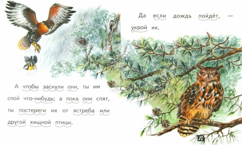 Иллюстрация 1 из 10 для Птичка - Александр Федоров-Давыдов | Лабиринт - книги. Источник: Лабиринт