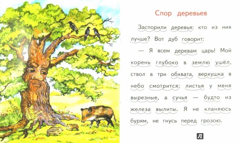 Иллюстрация 1 из 13 для Спор деревьев - Константин Ушинский | Лабиринт - книги. Источник: Лабиринт