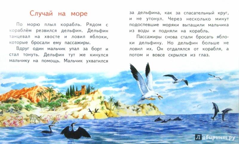 Иллюстрация 1 из 23 для В зоопарке - Владимир Степанов | Лабиринт - книги. Источник: Лабиринт