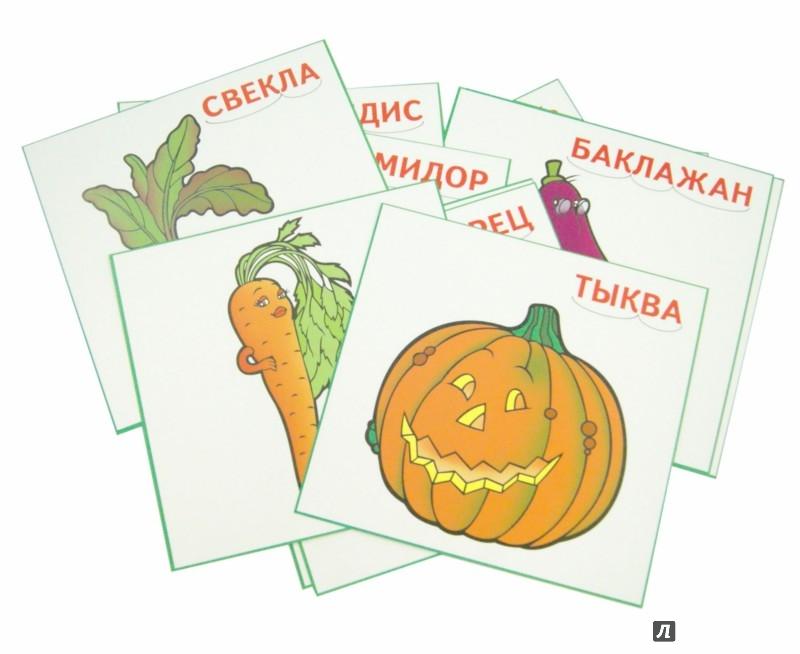 Иллюстрация 1 из 5 для Карточки. Овощи | Лабиринт - книги. Источник: Лабиринт