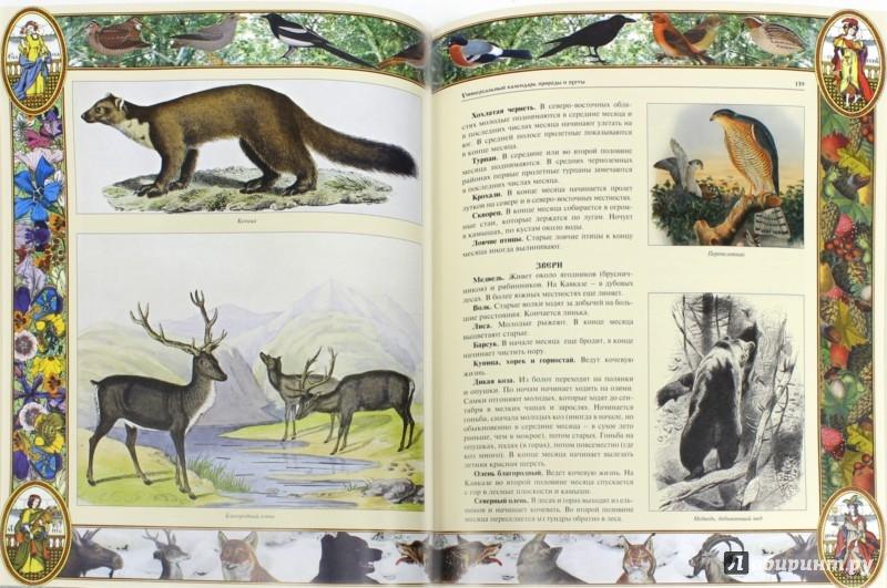 Иллюстрация 1 из 9 для Настольная книга охотника   Лабиринт - книги. Источник: Лабиринт