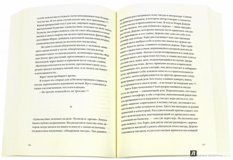 Иллюстрация 1 из 7 для Поэтика пространства - Гастон Башляр | Лабиринт - книги. Источник: Лабиринт