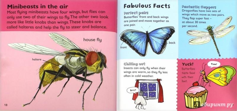Иллюстрация 1 из 9 для Minibeasts - Jaclyn Crupi | Лабиринт - книги. Источник: Лабиринт