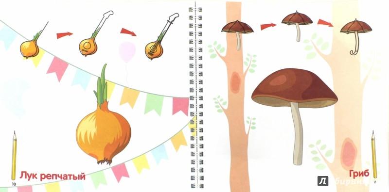 Иллюстрация 1 из 5 для Фантазируй и рисуй: фрукты и овощи | Лабиринт - книги. Источник: Лабиринт