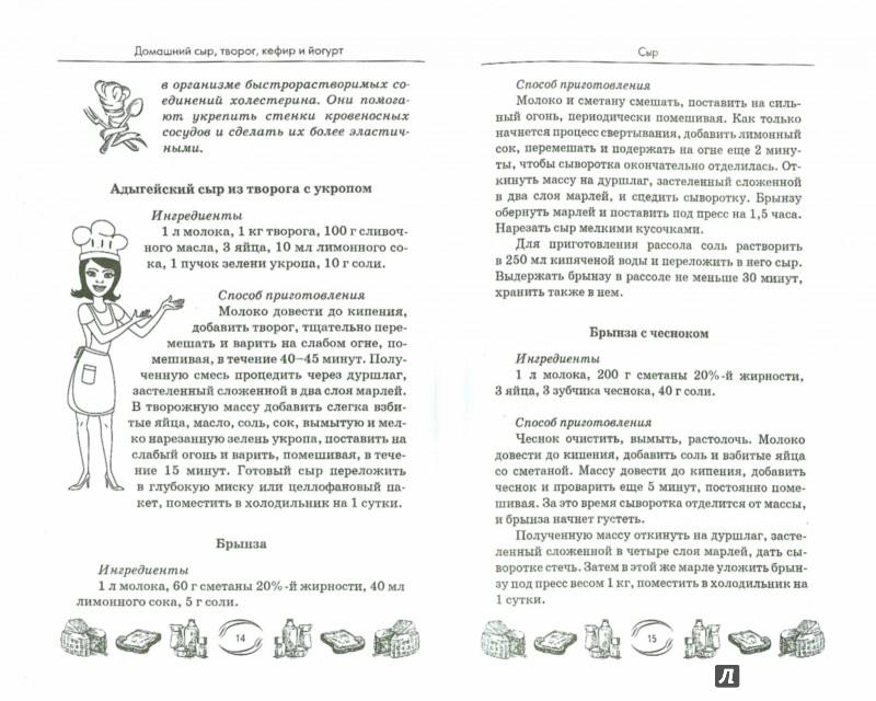 Иллюстрация 1 из 16 для Домашний сыр, творог, кефир и йогурт - Мила Солнечная | Лабиринт - книги. Источник: Лабиринт