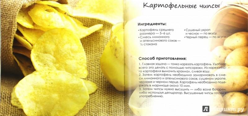 Иллюстрация 1 из 10 для Живые рецепты. Кулинарная книга сыроеда - Елена Низеенко | Лабиринт - книги. Источник: Лабиринт