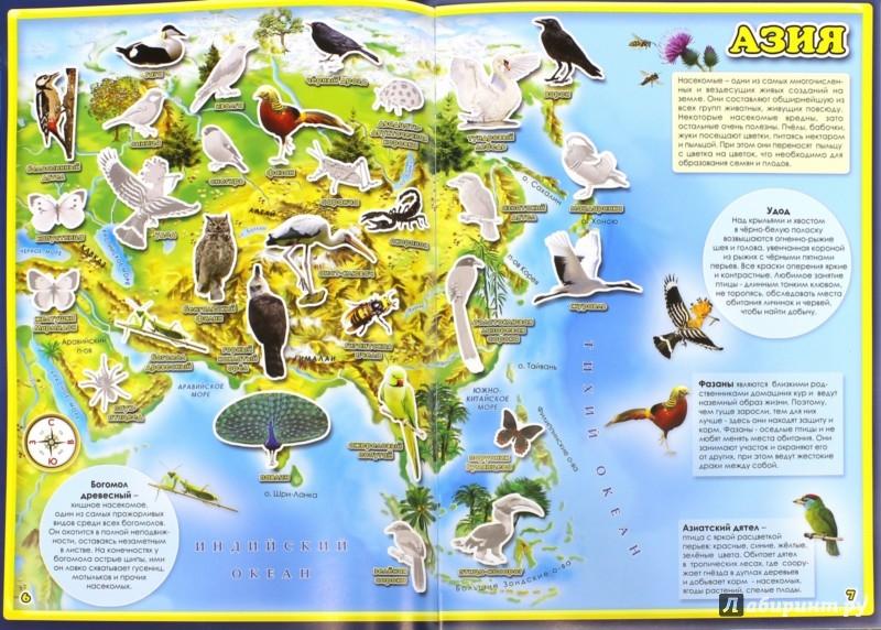 Иллюстрация 1 из 2 для Атлас мира с наклейками. Птицы и насекомые | Лабиринт - книги. Источник: Лабиринт