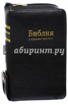 Библия. Книги Священного Писания Ветхого и Нового Завета. С комментариями и приложениями
