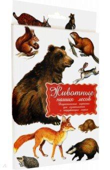 Дидактические карточки Животные наших лесов раннее развитие маленький гений дидактические карточки одежда