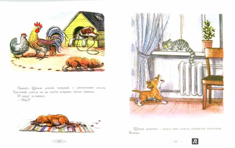 Иллюстрация 1 из 26 для Сказки и картинки - Владимир Сутеев | Лабиринт - книги. Источник: Лабиринт