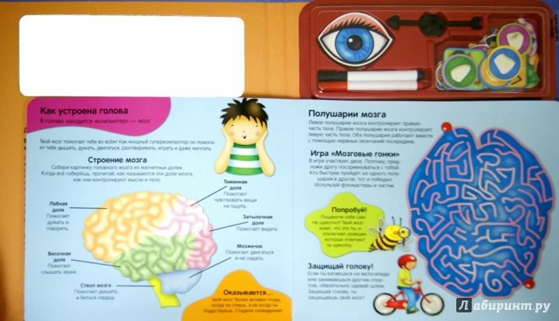 Иллюстрация 1 из 14 для Как мы видим, слышим, чувствуем - Sharon Streger | Лабиринт - книги. Источник: Лабиринт