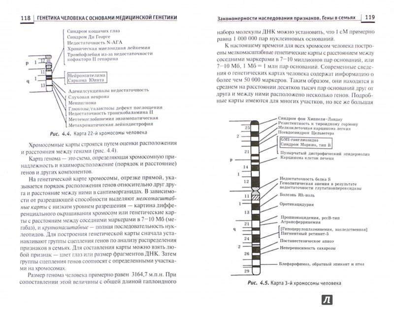 Иллюстрация 1 из 28 для Генетика человека с основами медицинской генетики. Учебник - Элеонора Рубан | Лабиринт - книги. Источник: Лабиринт